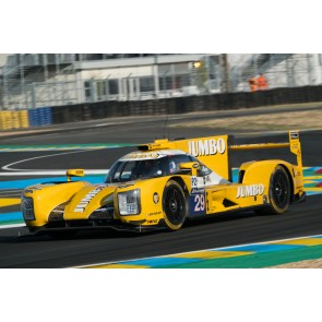 "1:43 Dallara P217 - Gibson No. 29 Le Mans 2017, ""Racing Team Holland"" J. Lammers - F. van Eerd - R. Barrichello"